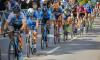 Движение общественного транспорта во время велопробега в Купчино будет изменено