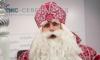 Росприроднадзор хочет отсудить у Деда Мороза 15 тысяч