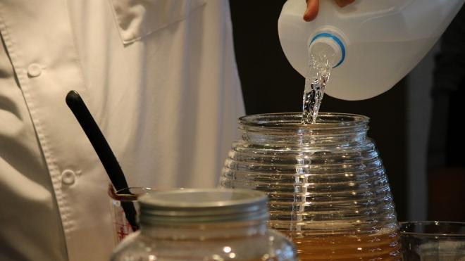 Названы полезные и вредные свойства чайного гриба