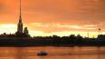 В Неве на берегу Заячьего острова охранник заметил ...