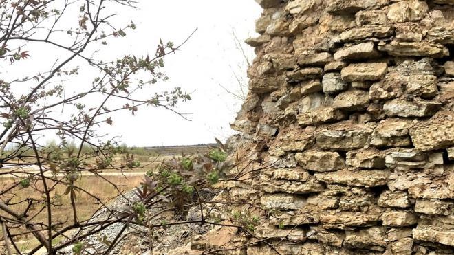 В развалах Алексеевского карьера в Ленобласти нашли сооружение с окаменелостями