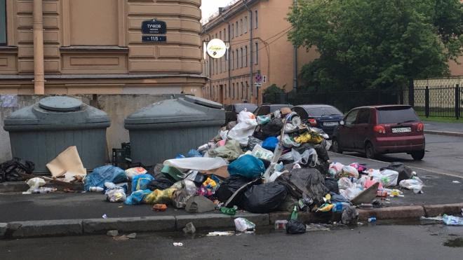 Петербуржцы пожаловались на зловонную кучу мусора в Тучковом переулке