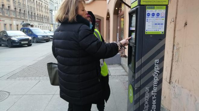На улице Рубинштейна в 2021 году появятся дополнительные паркоматы