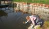 Комитет по природопользованию проверил состояние петербургской реки Новая