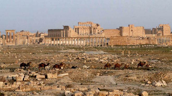В Сирии открыли архитектурную выставку о сходстве Пальмиры и Петербурга