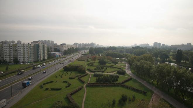 В Калининском районе благоустроили 6 га Муринского парка
