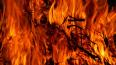 В Петербурге ночью тушили пожар повышенной сложности