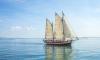 В петербургском яхт-клубе пройдет юниорский ЧМ по парусному спорту