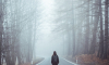 МЧС предупреждает жителей Петербурга о густом тумане 2 сентября