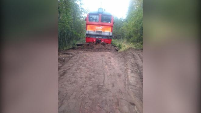 В Пестовском районе перед грузовым поездом внезапно закончились рельсы