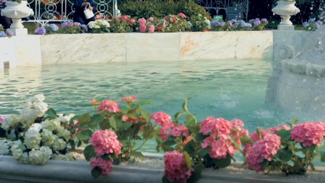 Петербуржцы смогут выбрать фонтаны, требующие срочной реставрации