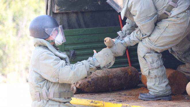 В деревне Горы обнаружили противотанковую мину