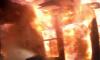 В СНТ Выборгского района сгорел одноэтажный дом