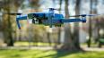 Парк Монрепо находится под присмотром дронов
