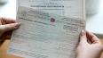 В Петербурге пропали 900 открепительных удостоверений ...
