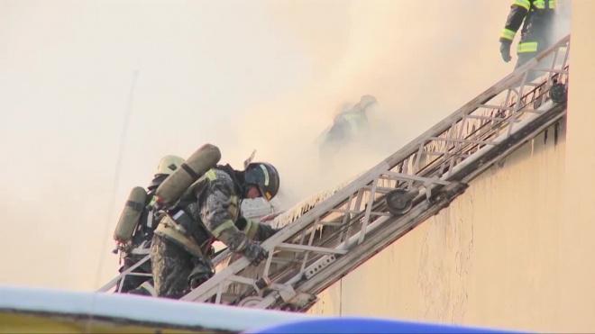 После пожара в квартире в Дружной горке нашли труп