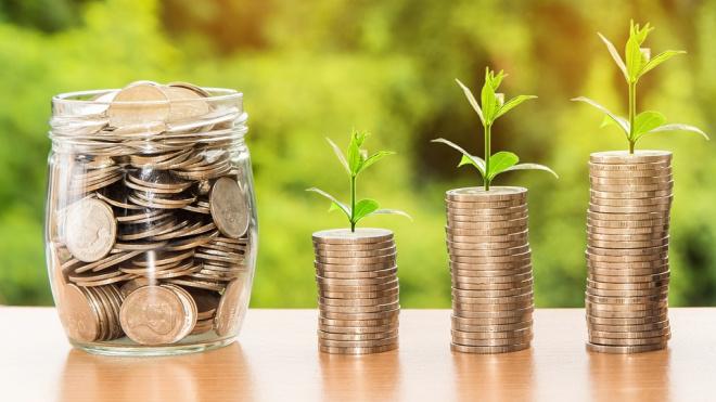 Среднемесячная заработная платав Ленобласти составила 44 509 рублей