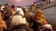 """На станции """"Девяткино"""" произошел коллапс из-за скопления ..."""