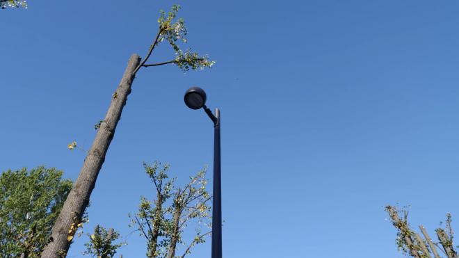 Новое освещение в 2021 году получат девять внутриквартальных территорий Петербурга
