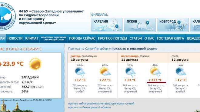Гидрометцентр обещает петербуржцам жару в +217 градусов Цельсия