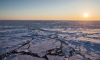 Дрейфующая канадская баржа может стать причиной экологической катастрофы в Чукотском море