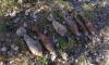 Рядом с газопроводом во Всеволожском районе обнаружено 166 мин времен ВОВ