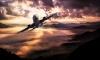"""Пьяный российский """"патриот"""" пообещал взорвать самолет, летевший из Дубая в Киев"""