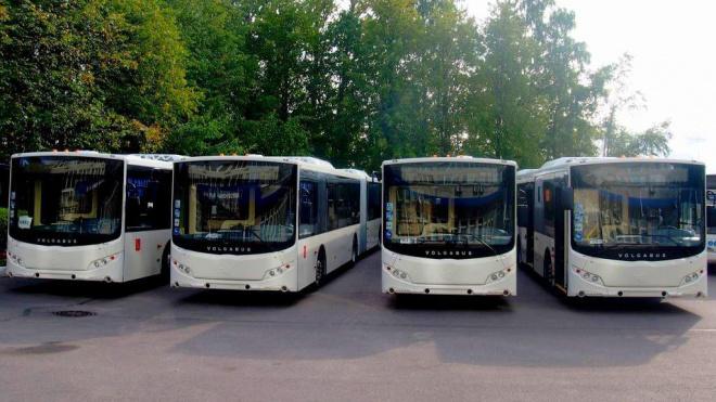 """На улицы Петербурга в экспериментальном режиме выйдут автобусы цветов """"Зенита"""""""