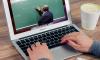 Власти Петербурга призвали не допустить сокращение зарплат учителей
