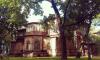 Албин поручил пересчитать деревянные памятники в Петербурге