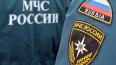 В Псковской области прошли XXII межрегиональные соревнов ...