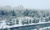 В Сеть попали фото снегопада в Магаданской области