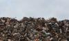 В этом году в Ленинградской области уничтожили 757 незаконных свалок