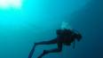 В Крыму на затонувшем корабле обнаружили картины Айвазов...