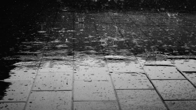 В Петербурге завтра обещают сильный ветер с дождем