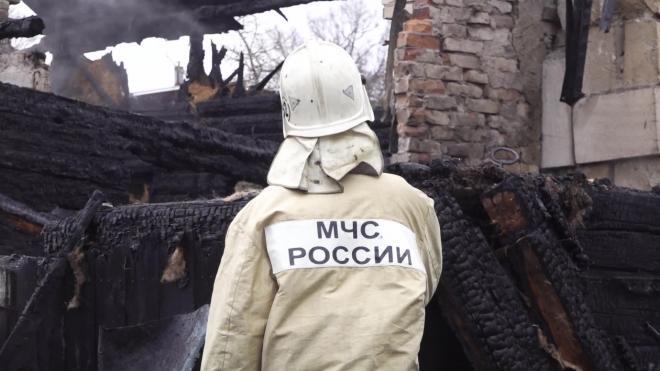 Петербургский суд отказал бывшему замглавы МЧС Беляеву в пожизненной пенсии