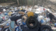 Жители Нового Девяткино пожаловались на горы мусора ...
