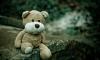 В Ленобласти 9-летнюю девочку загрызла собака