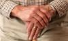 В Правительстве Северной столицы рассказали о жизни пенсионеров