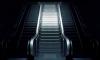 Бесхозный предмет закрывал семь станций петербургского метро