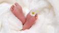В Петербурге свидетельства о рождении будут выдавать ...