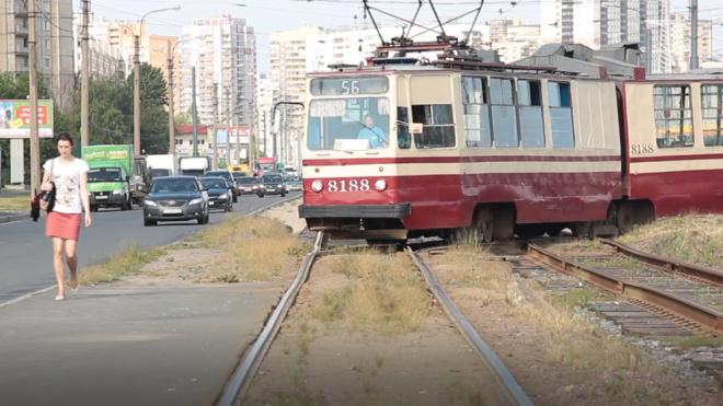 В течение суток будет ограничено движение трамваев по проспекту Обуховской Обороны