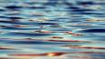 В Петровском пруду утонул мужчина с бусами