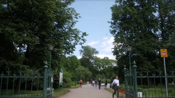Сквер на Кузнечном переулке и парк Малиновка не включили в список зеленых насаждений