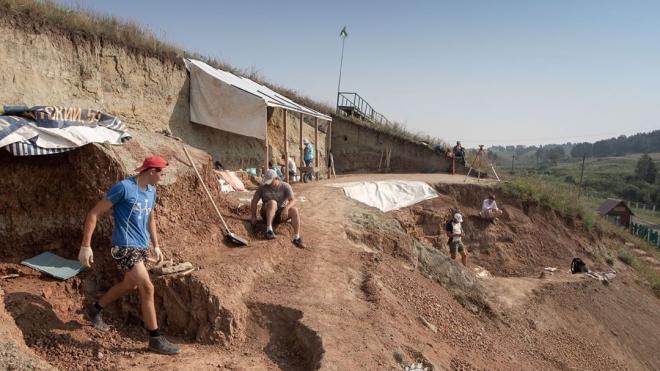 Палеонтологи из Петербурга раскопали в Кемерово кости пситтакозавра