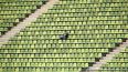 Футбольная Лига чемпионов может возобновиться 7 августа