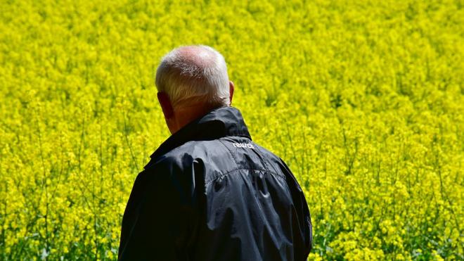 Эксперт рассказал о возможности повышения пенсионного возраста