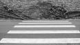 В Гатчине на пешеходном переходе водитель сбил 9-летнюю ...