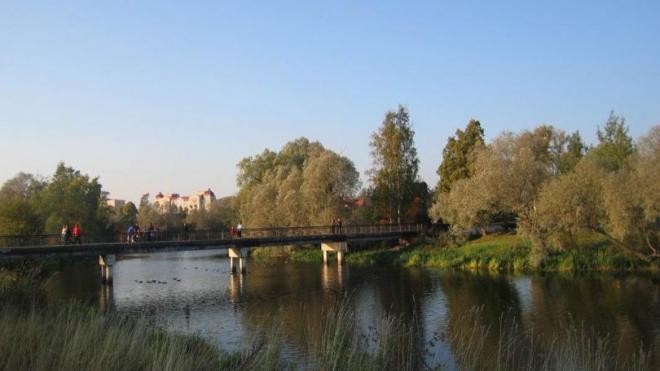 Колпинский парк благоустроят за 156 млн рублей