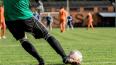FIFA понравилось: в Петербурге пройдет ЧМ-2018 среди ...